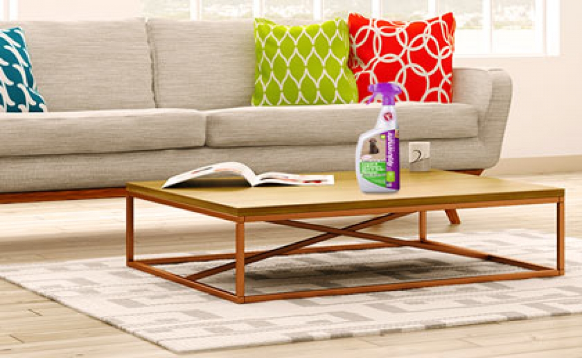 Give Your Couch A Makeover With The Right Upholstery Cleaner