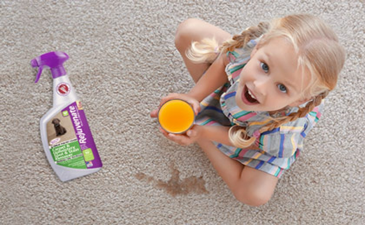 Tips On Choosing The Right Carpet Cleaner
