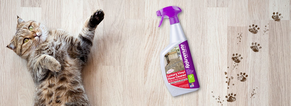 These 2 Common Types Of Floor Cleaner Were Improved By Rejuvenate