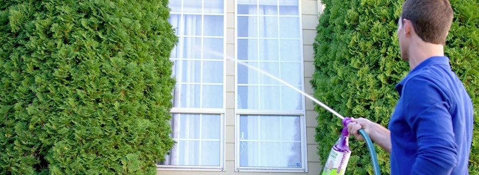 Want To Know The Best Way Clean Windows
