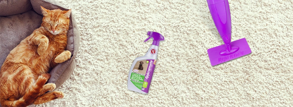Household Cleaning Products Worth Buying
