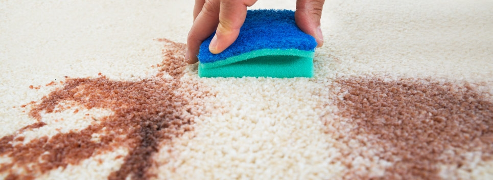Oops, They Spilled It Again; Removing Drink Stains from Carpets