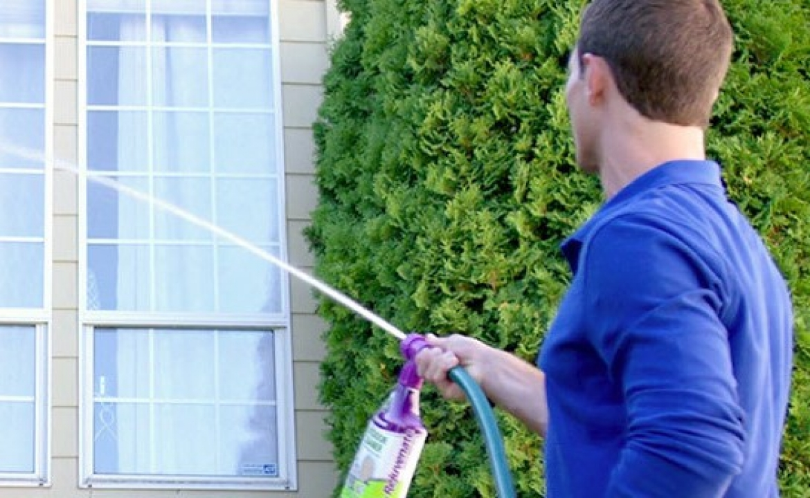 Want To Know The Best Way To Clean Windows?