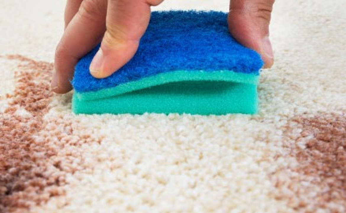 Caught in the Act; Removing Food & Dessert Stains from Carpets